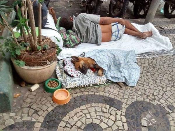Có lẽ đối với ông, chú chó không chỉ là vật nuôi, là người bạn, mà còn là một đứa trẻ cần được thương yêu và chăm sóc.(Ảnh: Internet)