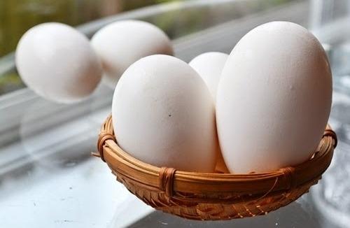 Nhiều người có thói quen ăn trứng sống đánh với mật ong hoặc hút trứng sống, trứng chần vì cho như vậy mới bổ dưỡng và có lợi cho sức khỏe. Ảnh minh họa.