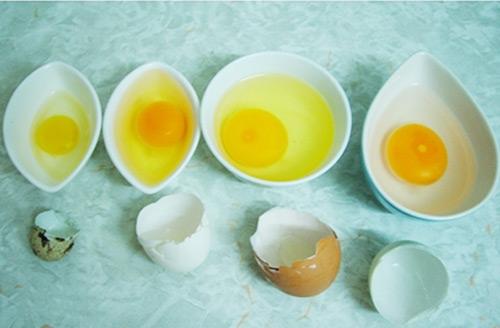 Cũng tuyệt đối không cho bé mới ốm dậy ăn trứng, nhất là khi bé bị sốt sẽ làm tăng nhiệt độ cơ thể trẻ khiến bệnh của bé trầm trọng thêm. Ảnh minh họa.