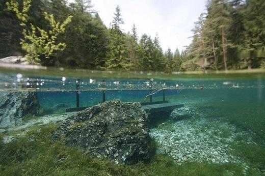 ... đềucó thể thấyrõ bởi nước hồ rất sạch và trong. (Ảnh: Internet)