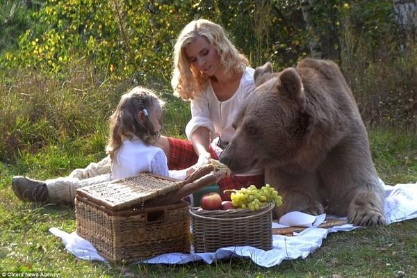 Stepan từ khi ra đời đã sống trong sự yêu thương chăm sóc của con người, vì vậy nó rất quấn quít và thích tới gần người lạ.