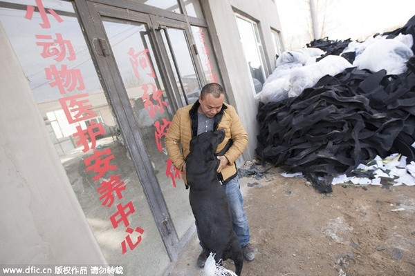 Ý tưởng xây dựng một trại cứu trợ chó đến với Wang Yan sau khi anh mất thú cưng vào 3 năm trước.