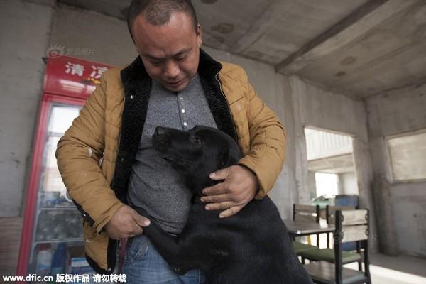 Anh chỉ mong có người sẽ quyên góp thức ăn để nuôi đám chó.