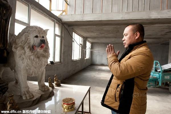 Mùa đông sắp tới, Wang Yan không biết liệu có thể lo cho hàng trăm con chó được ấm áp hay không.