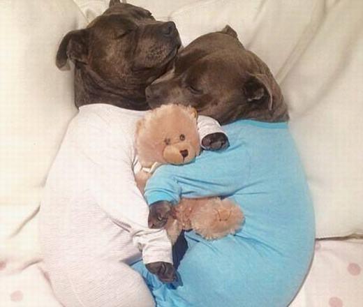 """""""...khép đôi mi chung một giường..."""". (Ảnh: Internet)"""