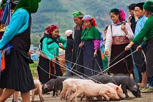 Họp chợ phiên– nét sinh hoạt văn hóa đặc trưng không thể thiếu của đồng bào Tây Bắc. (Ảnh: Nguyên Thanh Tùng)