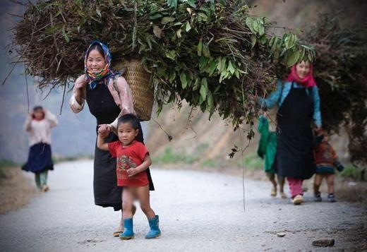 Những bé con của vùng đất Hà Giang vẫn theo mẹ làm việcdù còn rất nhỏ. (Ảnh: Borepanda)