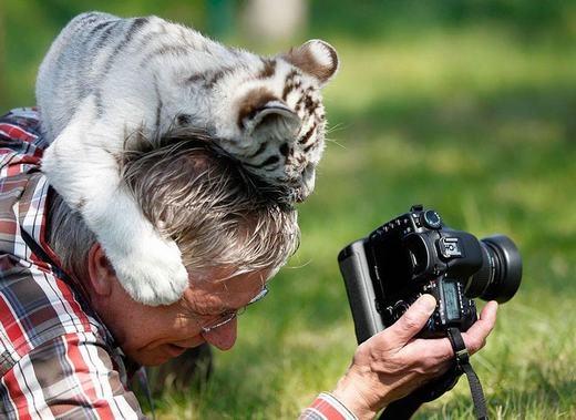 """""""Đừng chụp nữa, chơi với con đi!"""". (Ảnh:Boredpanda)"""