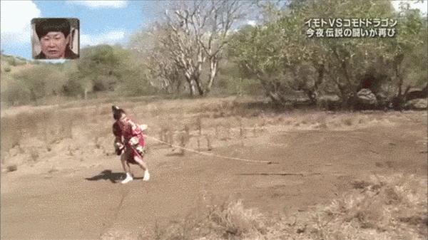 Không chỉ nổi tiếng bởi các dịch vụ kỳ lạ, Nhật Bản còn được biết đến với những gameshow truyền hình và trò chơi độc đáo. Trong ảnh là một trò chơi thực tế mang tên nhử rồng đất. Cô gái này sẽ buộc mồi nhử vào sau lưng để nhử chú rồng đất chạy theo. Khi chú đã cắn câu thì vui mừng chưa thấy đâu nhưng chắc hẳn sẽ phải mất hồn mất vía vì lo chạy thoát thân mất.