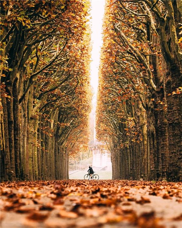 Mùa đông ởChâteau de Sceaux, Pháp dịu dàng với tông đỏ cam từ màu lá. (Ảnh: IG@wonguy974)