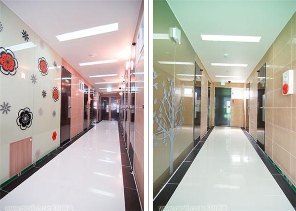 Là chung cư, goshiwoncũng có các khu hành lang đẹp mắt và được dọn dẹp sạch sẽ. (Ảnh: Internet)