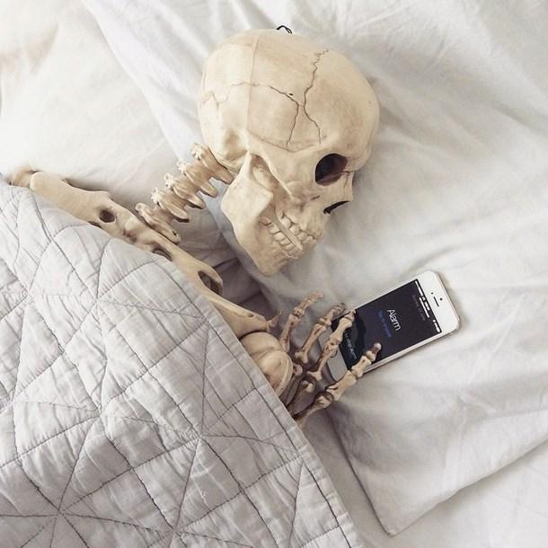 Khi xươngcòn say giấc ngủ...(Ảnh: Instagram)