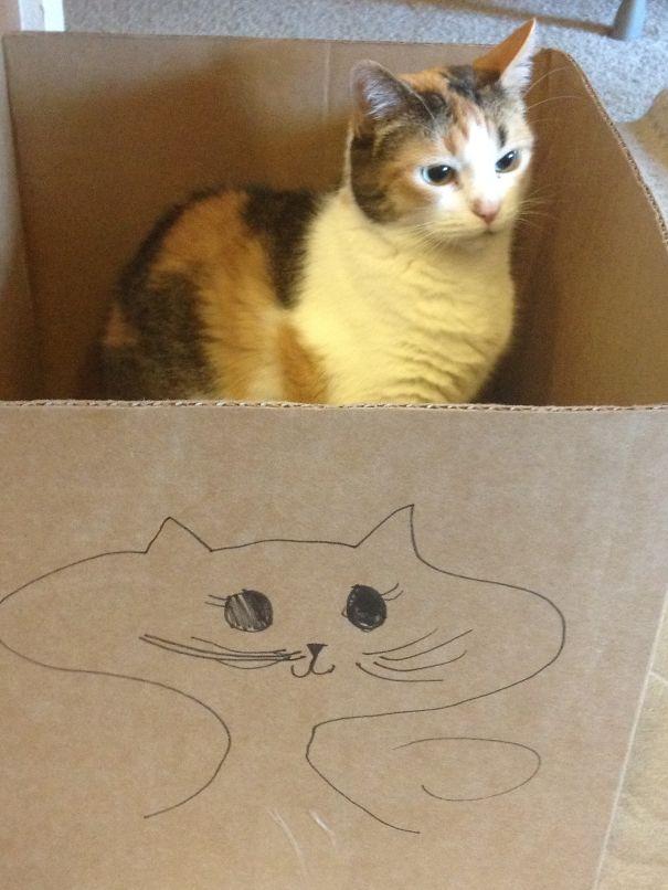 """""""Hình như ai đó ở ngoài chiếc hộp đang nói xấu mình..."""".(Ảnh: Bored Panda)"""