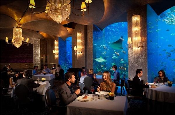 Thưởng thức bữa sáng muộn thứ sáu:Thứ sáu là ngày cuối tuần ở Dubai. Vào buổi sáng, các khách sạn thường đưa ra các gói ăn buffet thỏa thích với những món hảo hạng. Ngoài ra, đây còn là cách để gặp gỡ, giao thiệp và làm quen, đáng để bạn bỏ ra một số tiền không nhỏ.