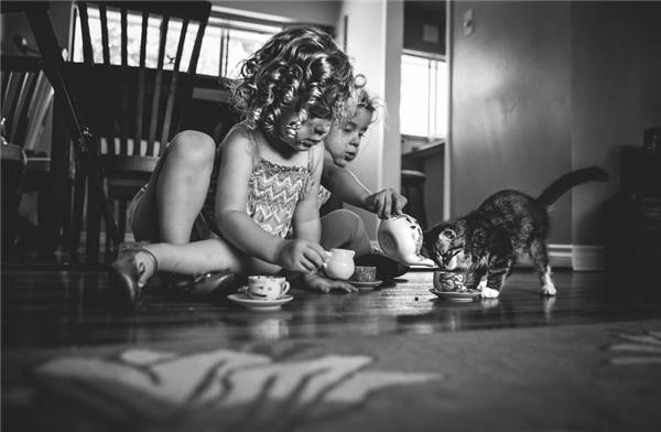 Một bữa tiệc trà chiều giữa những người bạn nhỏ. (Ảnh:Jody D'angelo, Canada)