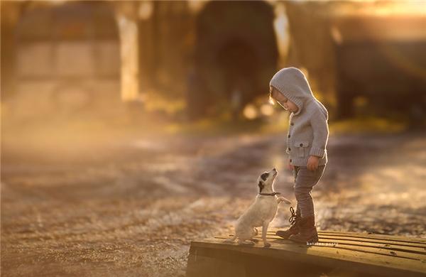 Thời gian trôi, rồi những đứa trẻ cũng lớn lên, chúng sẽ bay cao, bay xa. Nhưng sẽ luôn có một người bạn dõi theo chúng như ngườivệ sĩ trung thành nhất. (Ảnh:Katrina Parry, xứ Wales)