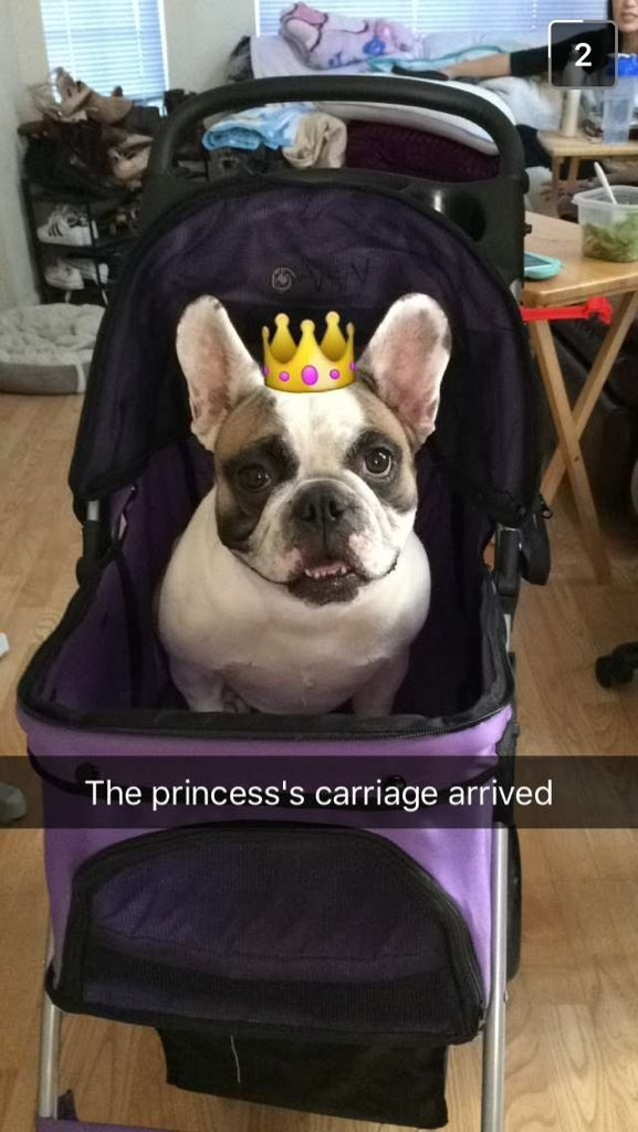 Công chúa giá đáo!(Ảnh: BuzzFeed)