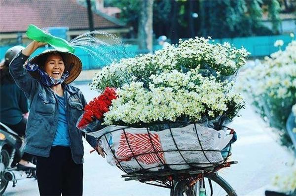 Hình ảnh chiếc xe đạp cũ kĩchở đầy những bông cúc họa mi trắng tinh khôikhẽ rung rinh trong gió như đám mây trôi bồng bềnh giữa lòng phố Hà Nội đẹp đến nao lòng người. (Ảnh: Internet)