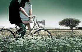 Tình yêu đi lạc nơi đâu?