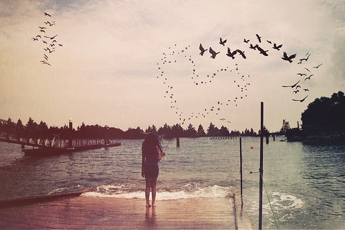Nếu biết cuộc đời là ngắn hạn, hà cớ gì không sống hết mình cho những năm tháng còn có thể yêu thương !