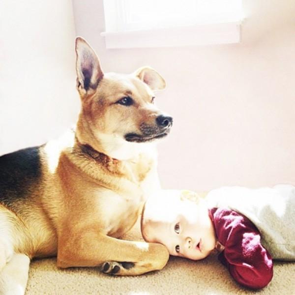 Ngẩn ngơ với những thước ảnh siêu yêu của cậu bé và cún cưng