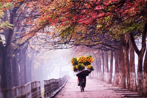 Hà Nội - Những ngày dịu dàng như thế...