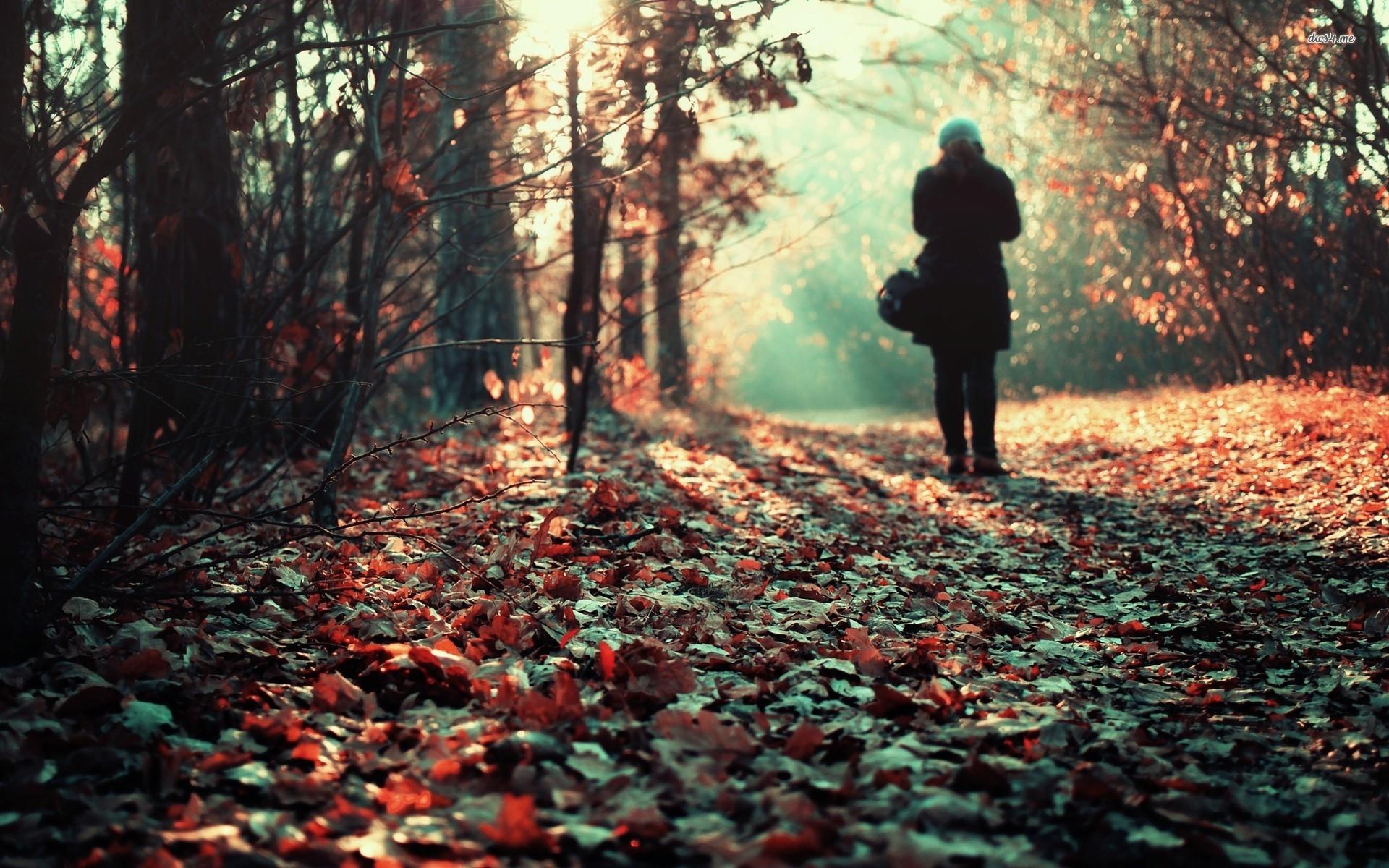 Chờ mùa yêu thương