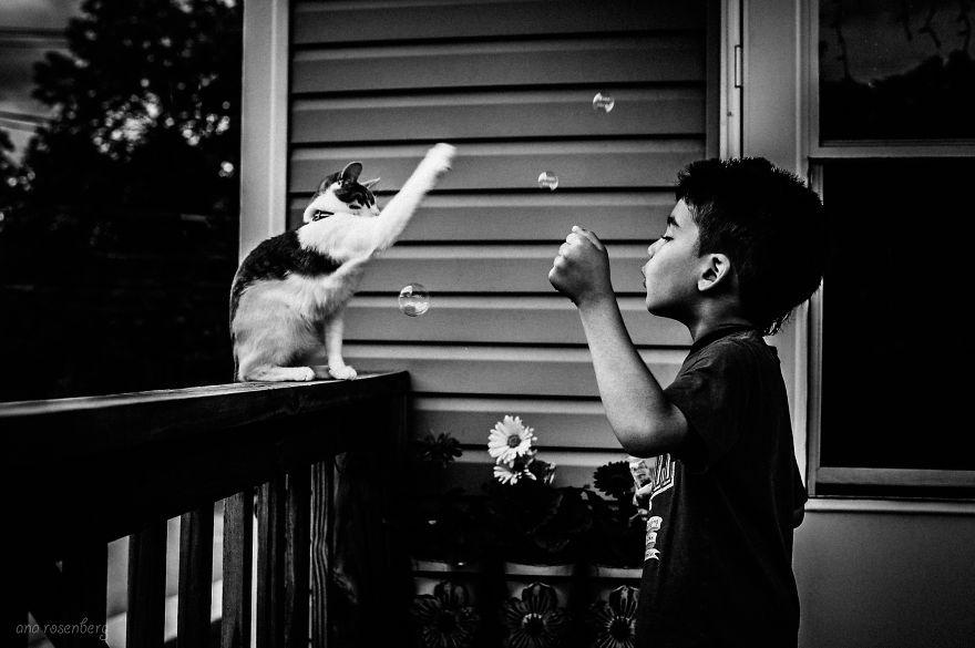Tan chảy vì những bức ảnh đáng yêu của bé và mèo con
