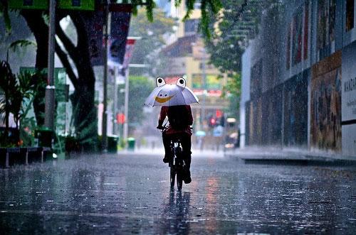 Bởi Sài Gòn lắm nắng nhiều mưa...