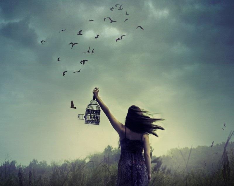 Không thể níu giữ một cơn gió vô tình