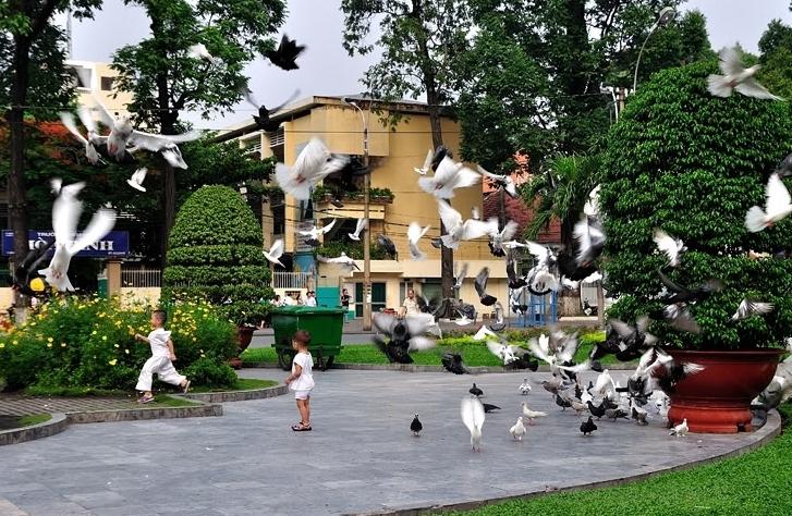 Gửi tặng Sài Gòn và những người tôi quen nơi đây