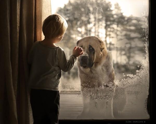 Bộ ảnh đẹp đến ngỡ ngàng của cậu bé bên các loài động vật