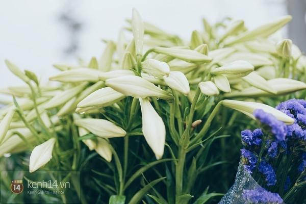 Mùa hoa loa kèn gọi tháng 4 về trên khắp phố Hà Nội