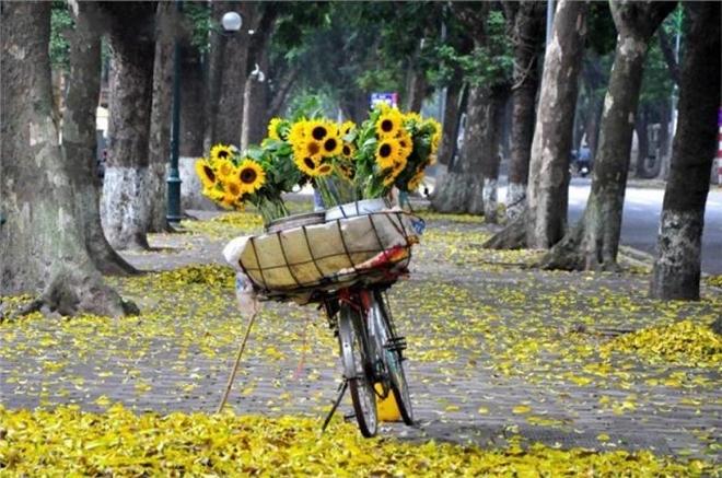 Sài Gòn, em yêu anh!