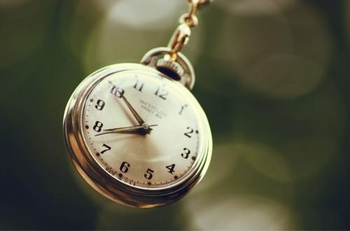 Các cú đêm thường giàu có hơn người hay dậy sớm