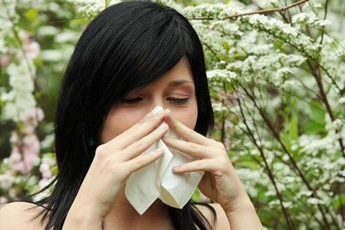 Hết lo viêm mũi khi trời trở lạnh