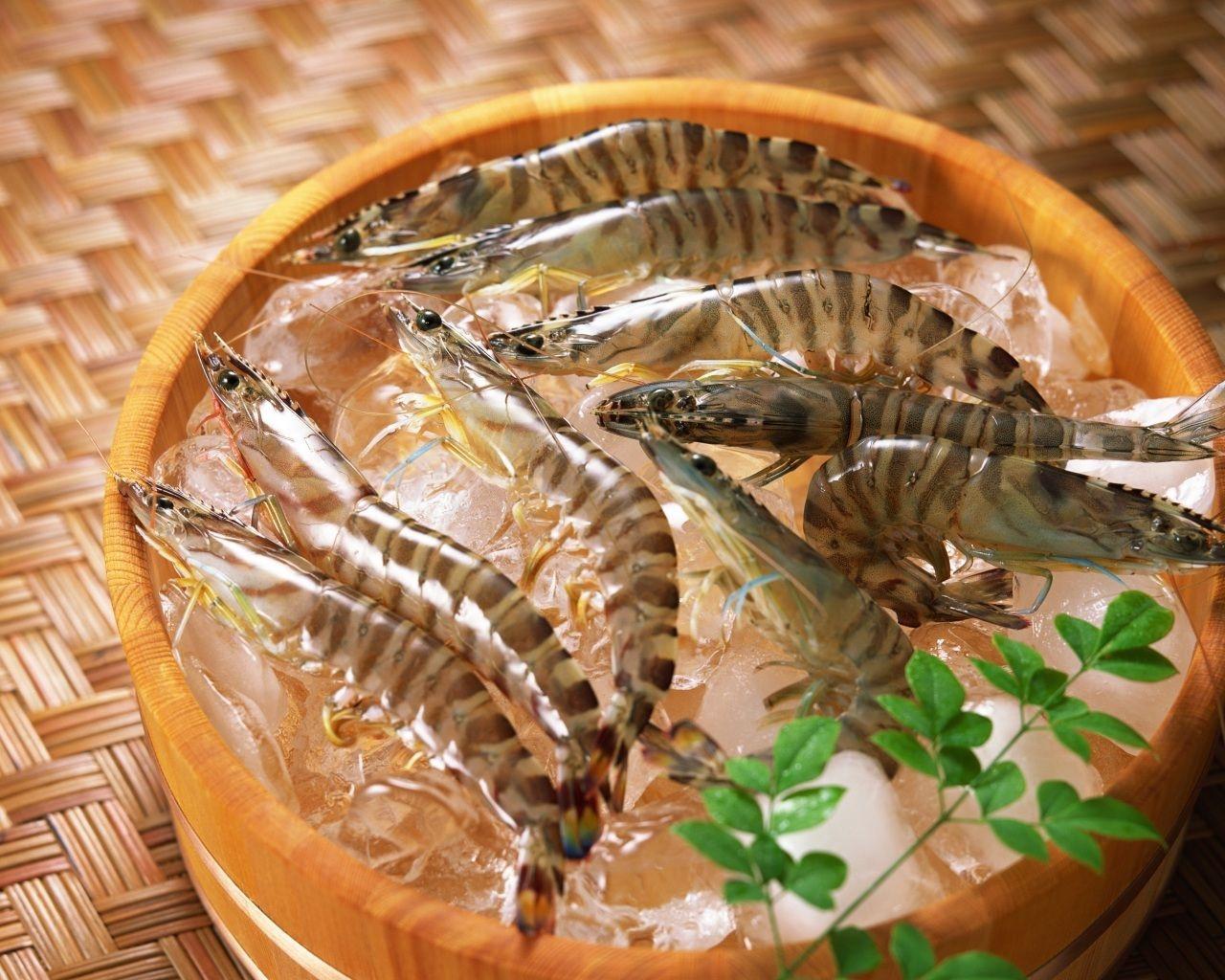 cho con ăn hải sản đúng cách