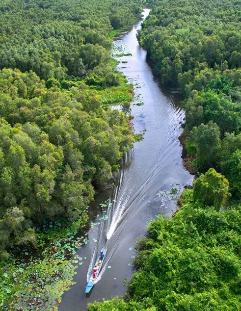 Khám phá nét đẹp nguyên sinh làng nổi chỉ cách Sài Gòn 100km