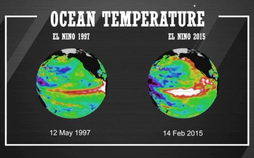Nhiệt độ trung bình ở Thái Bình Dương của năm 1997 và 2015. (Ảnh: Mirror)