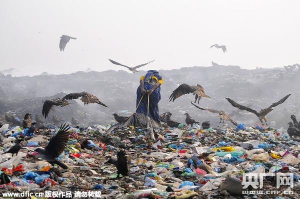 Ai nấy đều xúc động trước hình ảnh của người dân Bangladesh trên bãi rác.(Ảnh: Internet)