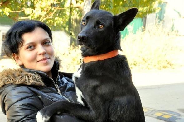 Shaviđã hiểu được sự trung thành của loài chó nhờNani. (Ảnh: Internet)