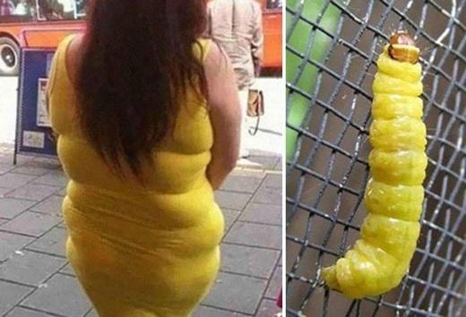 Có vẻ năm nay các chị em chuộng đầm bó màu vàng nhỉ?(Ảnh: Internet)