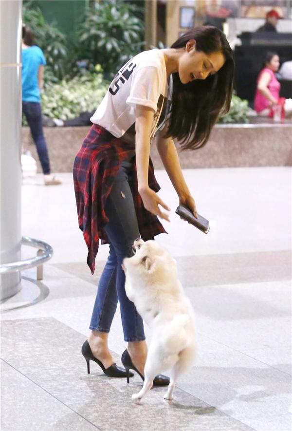 Chú cún cưng của Bảo Anh cũng được ra sân bay đón cô chủ. - Tin sao Viet - Tin tuc sao Viet - Scandal sao Viet - Tin tuc cua Sao - Tin cua Sao