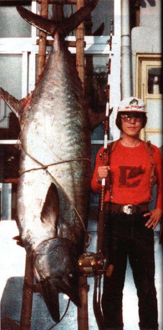 Cá thuđược bắtở Hàn Quốc vào năm 1982, nặng 83,35 kg. (Ảnh: Internet)