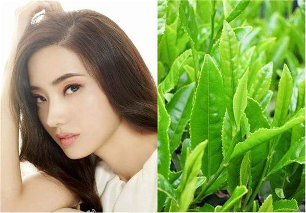 Những dưỡng chất chống oxi hóa và thải độc giúp mái tóc bạn không chỉ sạch mà còn phát triển tốt hơn.