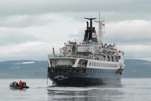 Năm 2013, một đoàn ngườiđã phát hiện được con tàu có tên Lyubov Orlova, đang trôi ở vùng biển thuộc Đại Tây Dương. Khi lên tàu, họđã chứng kiến khung cảnh hết sức hãi hùng: rất nhiều con chuột khổng lồ đang ở trên đó. Một chuyên gia cho biết rằng, chúng sống sót bằng cách sinh sản và ăn thịt nhau. Cuối cùng, họquyết định đánh chìm chúng giữa biển. (Ảnh: Oddee)