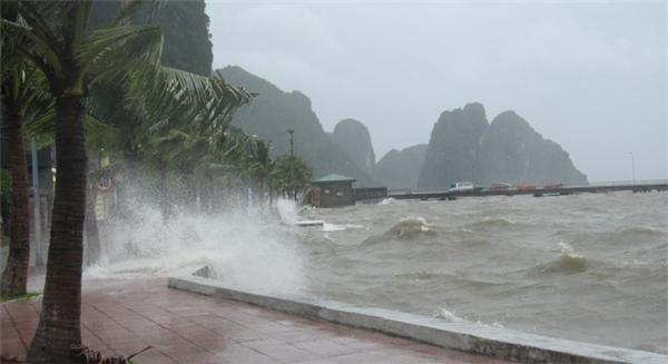 Mọi người nên theo dõi tình hình cơn bão để có phương án đề phòng. (Ảnh: Internet)