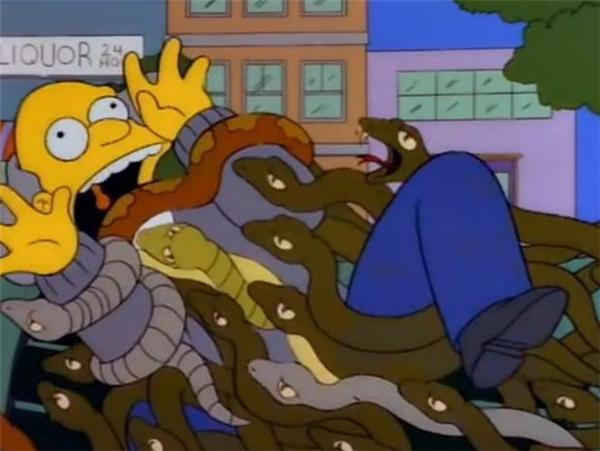 Rất may là những con rắn này chưa gây hại cho cư dân xung quanh.
