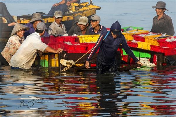 Lao động vất vả là thế nhưng nụ cười hồn hậu vẫn nở trên môi những người dân làm việc tại cảng cá.(Ảnh: Nguyễn Vũ Phước)