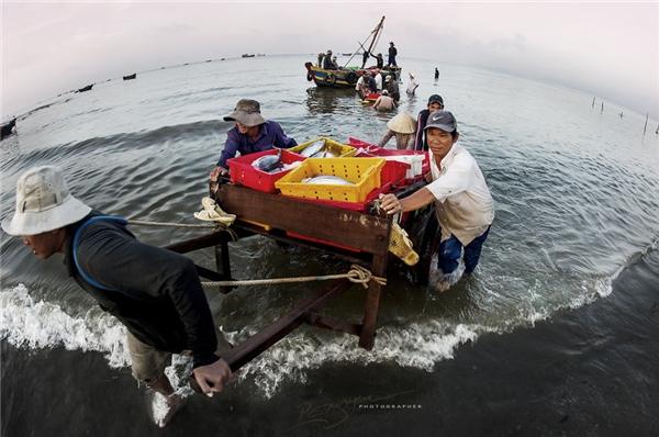 Cảng cá Long Hải là một trong những cảng lâu đời, lớn nhất và quan trọng nhất ở tỉnh Bà Rịa- Vũng Tàu.(Ảnh: Nguyễn Vũ Phước)